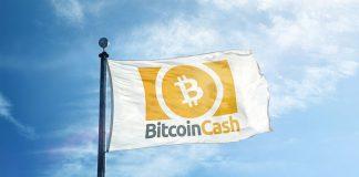 bitcoincash nedir